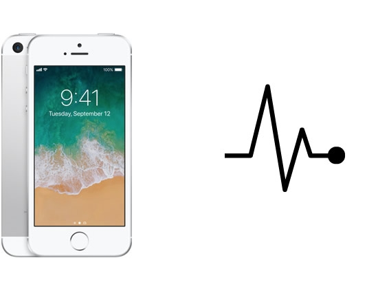 iPhone Diagnose / Kostenvoranschlag, iPhone 5s/SE