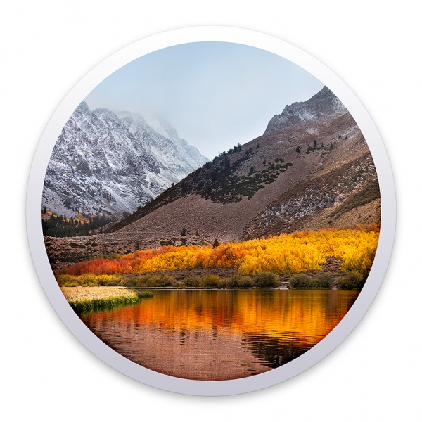 Apple macOS High Sierra Installations-Medium